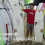 tomo vanguard surfboard